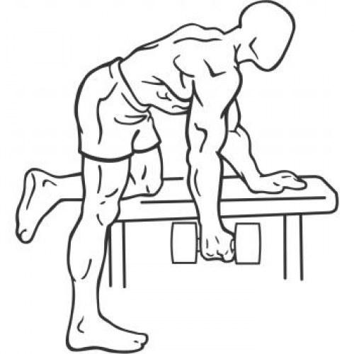 Rowing un bras haltère