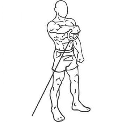 Elévations latérales, arrières et frontales à la poulie main derrière le dos