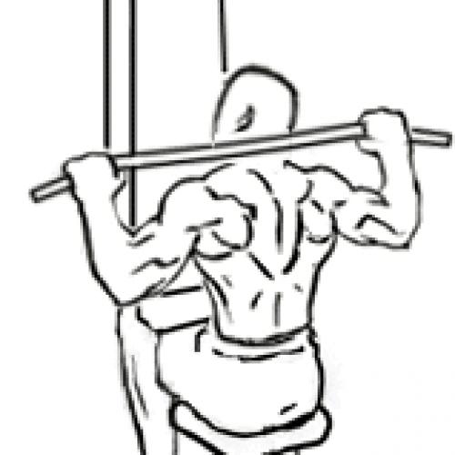 Tirage nuque pour muscler votre dos