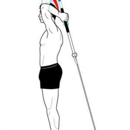 Extension à la corde poulie haute EN BISET Extension à la corde poulie basse derrière la nuque