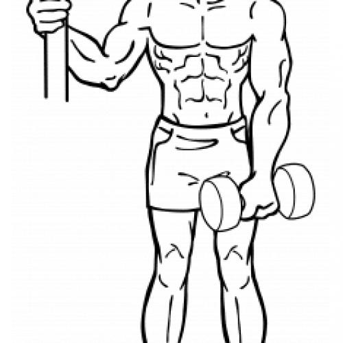 Élévation latérale 1 Bras haltère pour se muscler les épaules