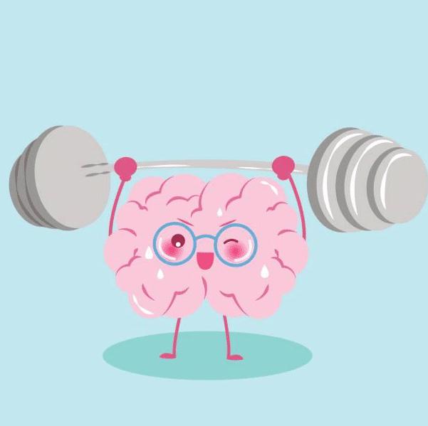 La mémoire musculaire existe t-elle vraiment?