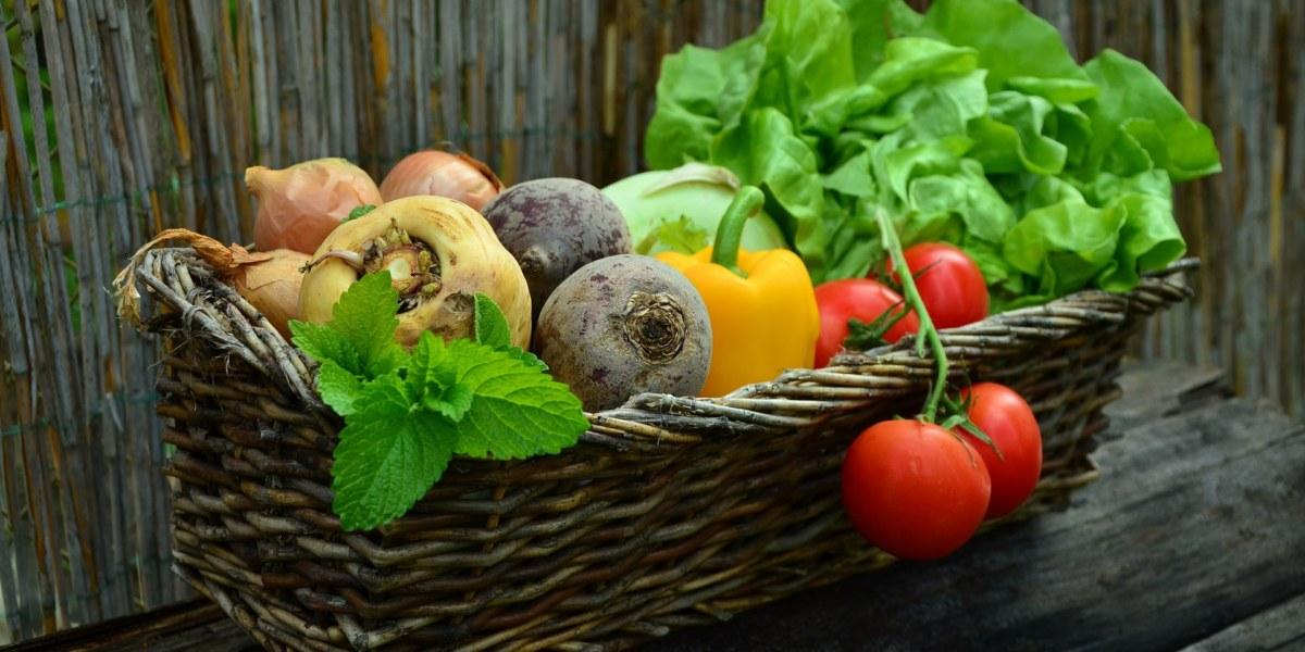 10 conseils pour ne jamais avoir faim en sèche