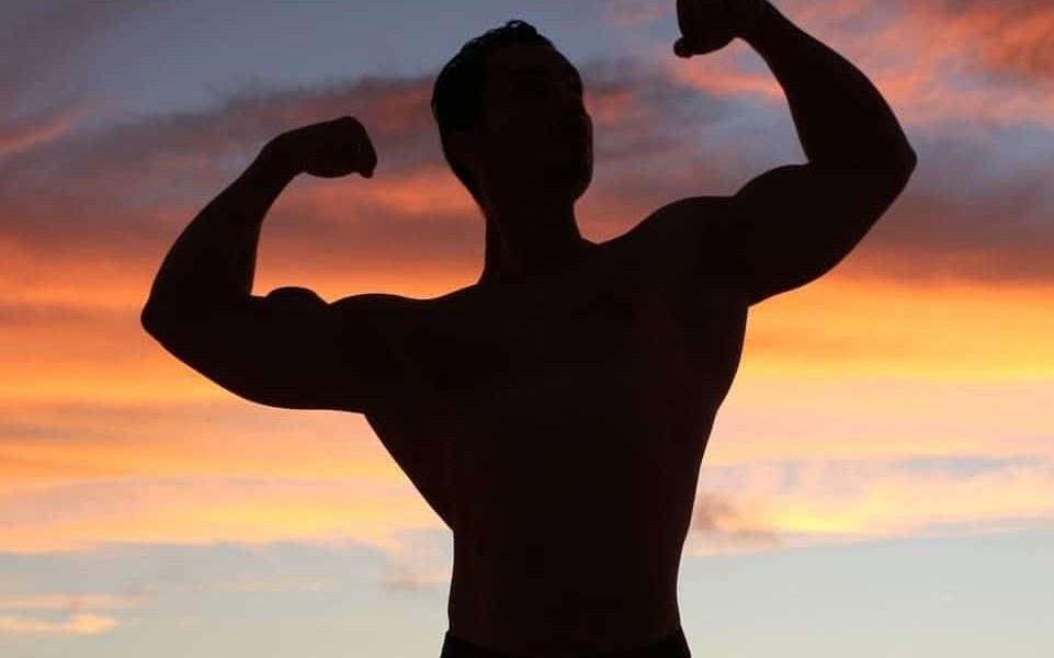 L'hypertrophie musculaire c'est quoi ?