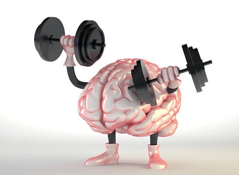 lexique musculation