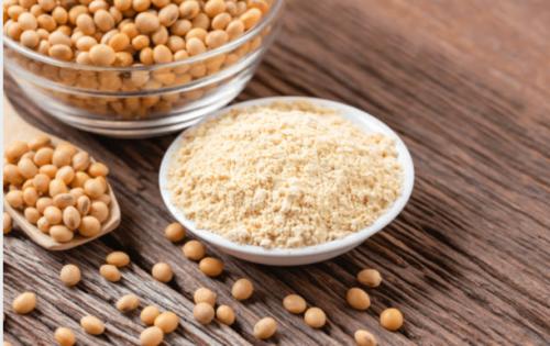 Tour d'horizon sur la protéine de soja