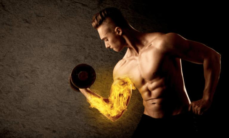 Comment fonctionne la congestion musculaire?