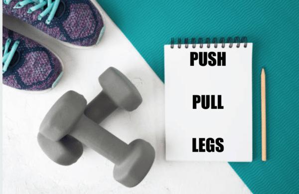 programme push pull legs