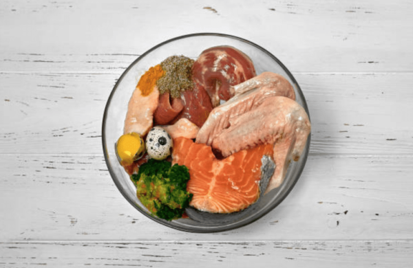 protéïnes animales