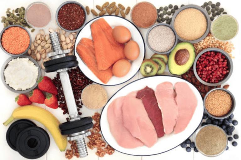 Quel est le rôle de la protéine en musculation?