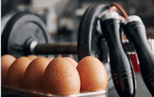 Pourquoi les oeufs sont si important en musculation?