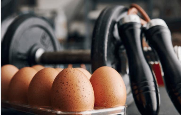 Pourquoi les oeufs sont si importants en musculation?