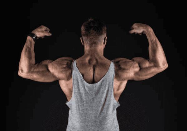 étirement biceps brachial