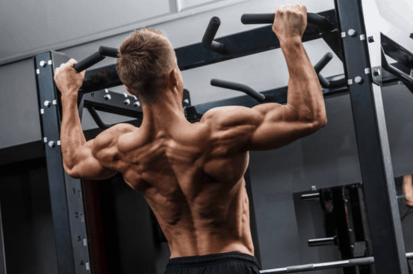 reprise musculation