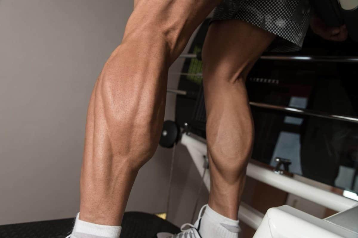 Comment se muscler les mollets ? Quels exercices en musculation ?