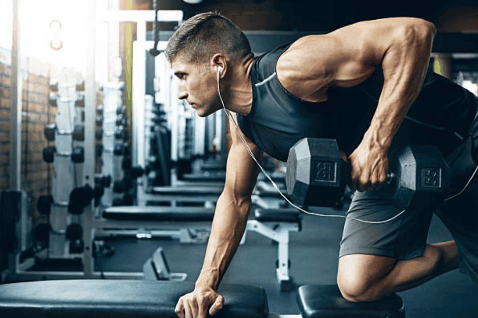 musculation fibre musculaire